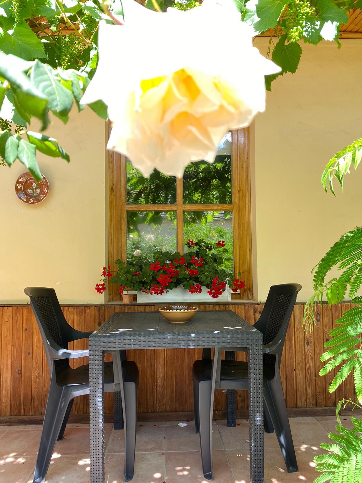 het hongaarse huisje 10 Vakantie Woning Hongarije